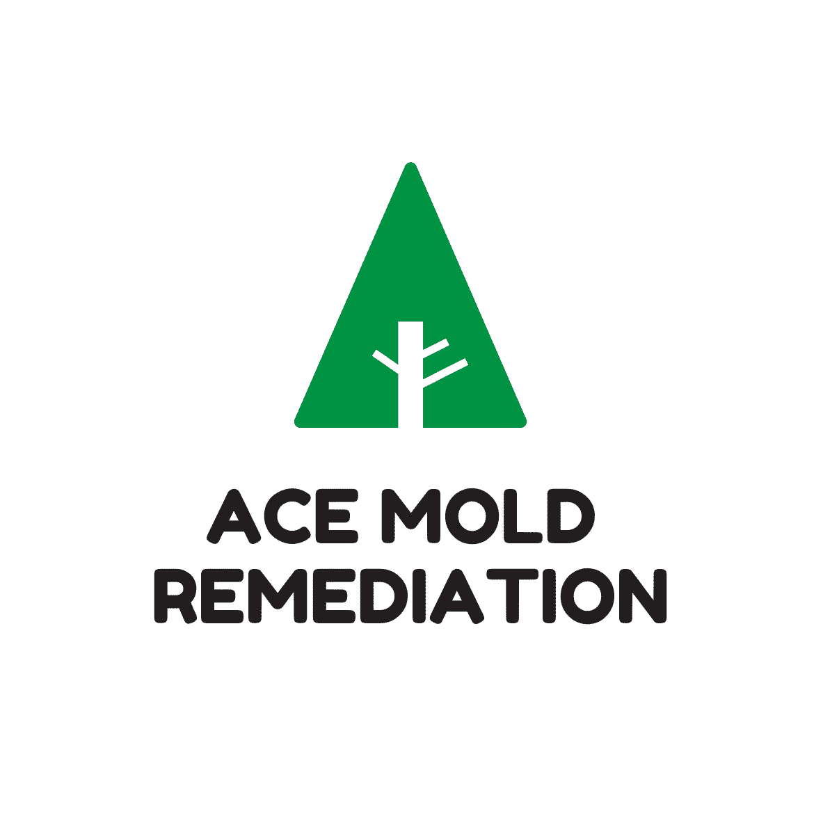 Ace Mold Remediation